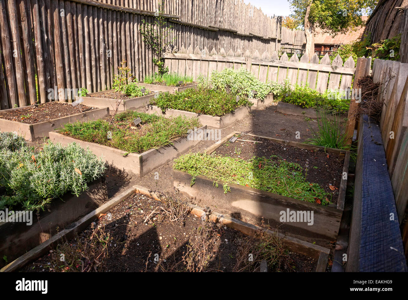 vegetable garden at sainte marie among the hurons;original authentic