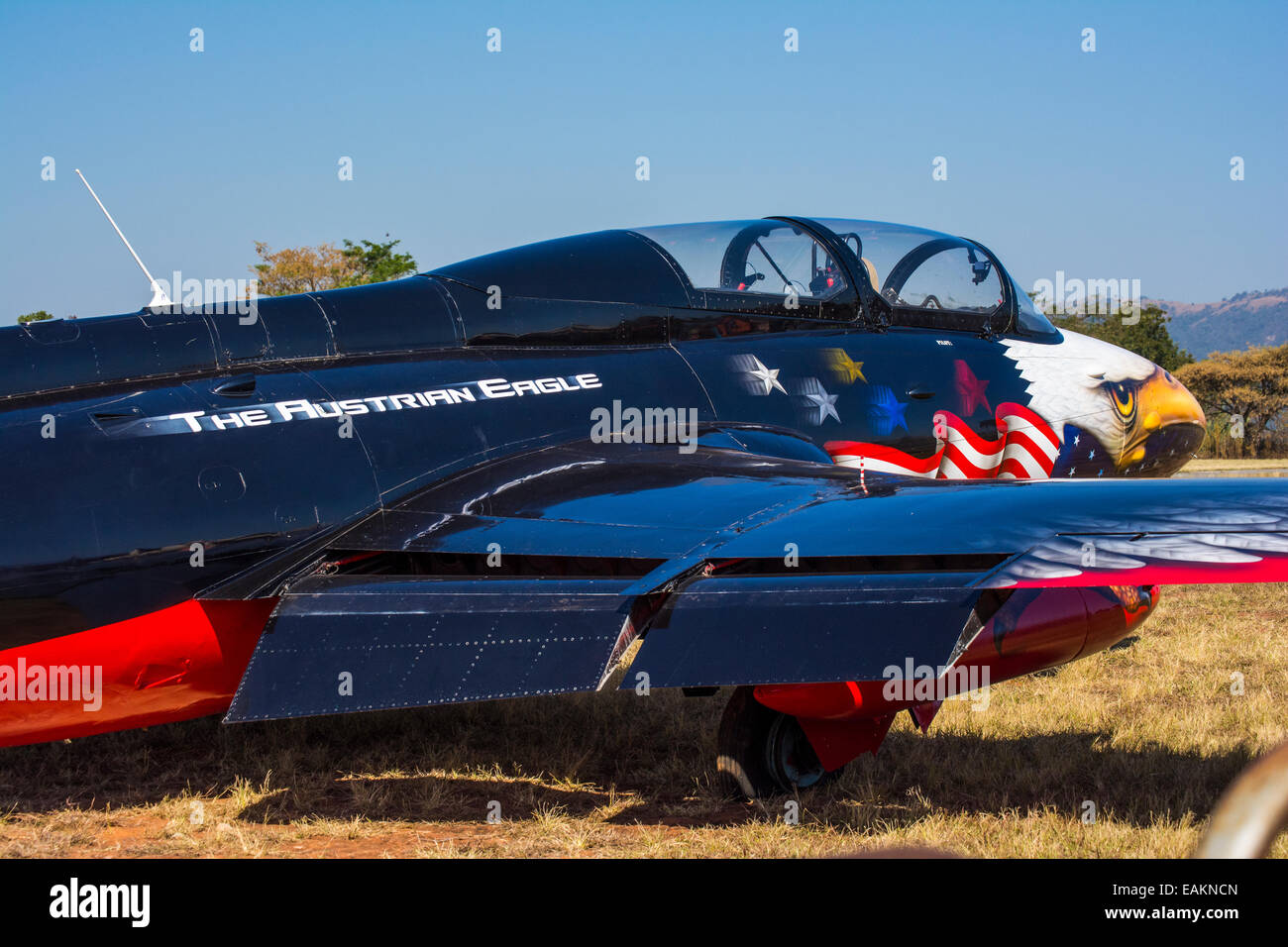 The Austrian Eagle Aero L-29 Delfin at the Lowveld Air Show with a puncture - Stock Image