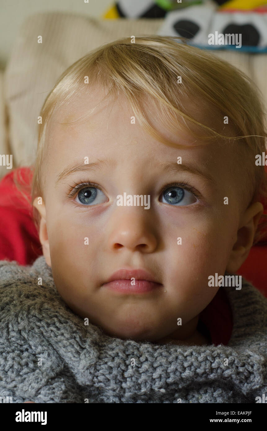 A blond and blue-eyed baby boy (ca. 18 months old) in a knitted jumper. - Stock Image