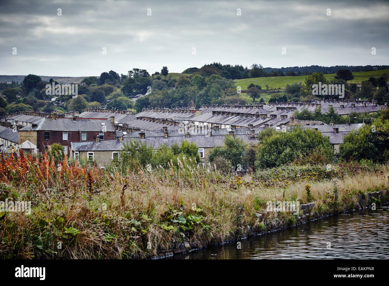Terraced house rooftops in Burnley - Stock Image
