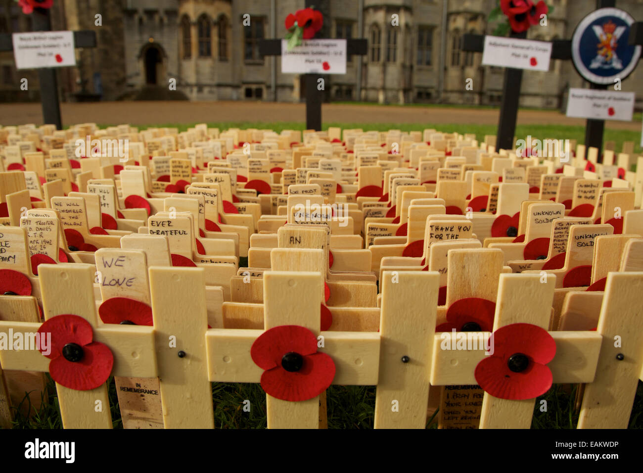 Wooden memorial crosses and Remembrance poppies adorn the grounds of Cardiff Castle prior to Remembrance Sunday. - Stock Image