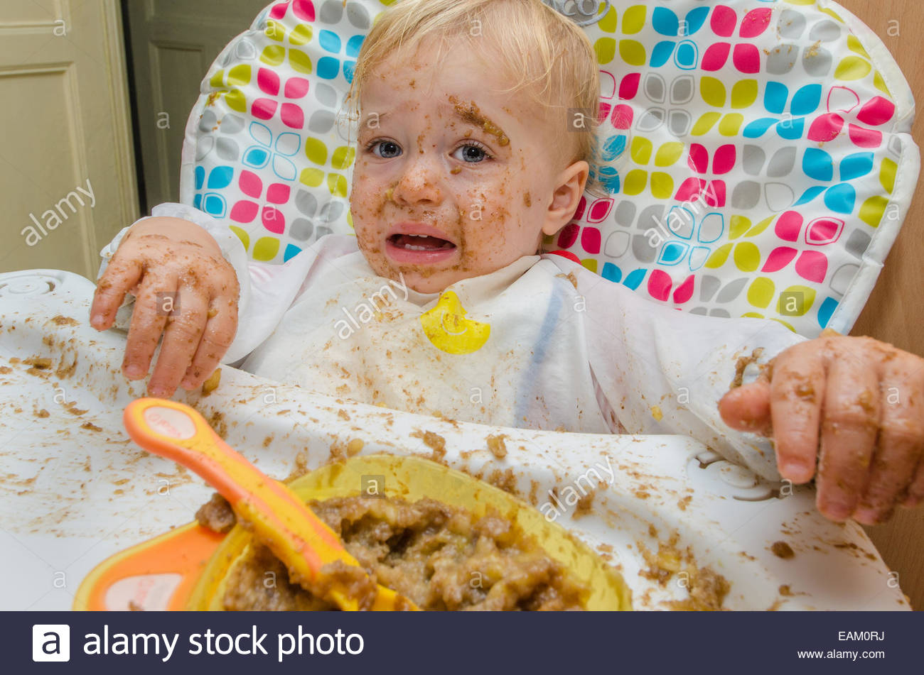 An 18-month old boy in a high chair eats a meal of pureed food in a very messy way - Stock Image