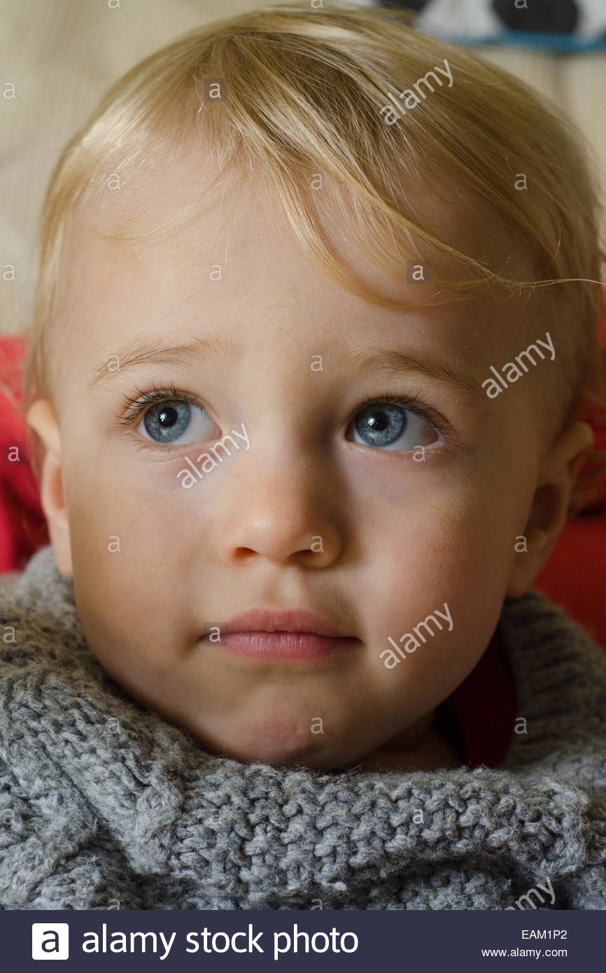 Portrait of a blond blue eyed 18 month old boy wearing a knitted jumper