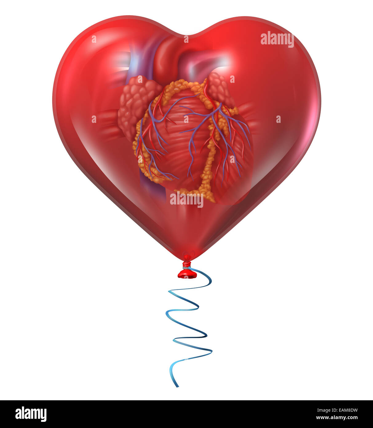 Heart health concept and medical symbol with a human anatomical organ inside a red balloon as an icon for circulatory - Stock Image