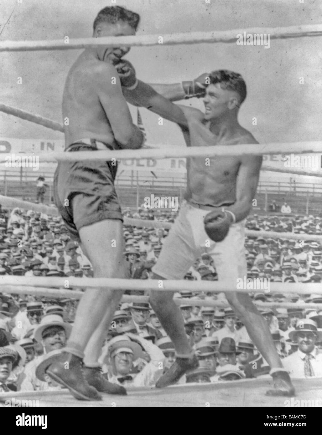 The knockout blow in the Dempsey-Willard battle.  Jack Dempsey landing a right punch to the jaw of Jess Willard, - Stock Image