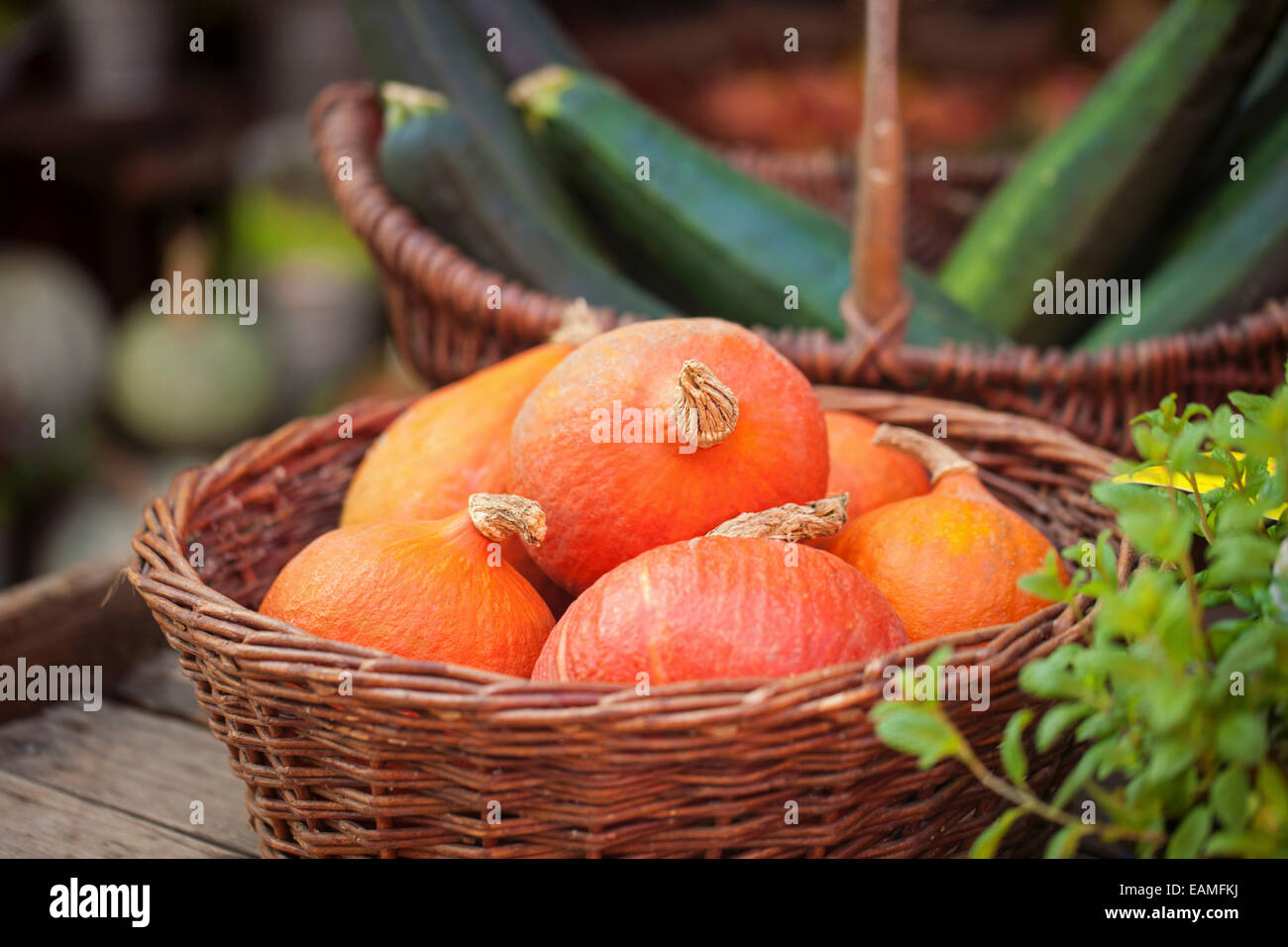 Vegetables in a baskets on farmer's market - Stock Image