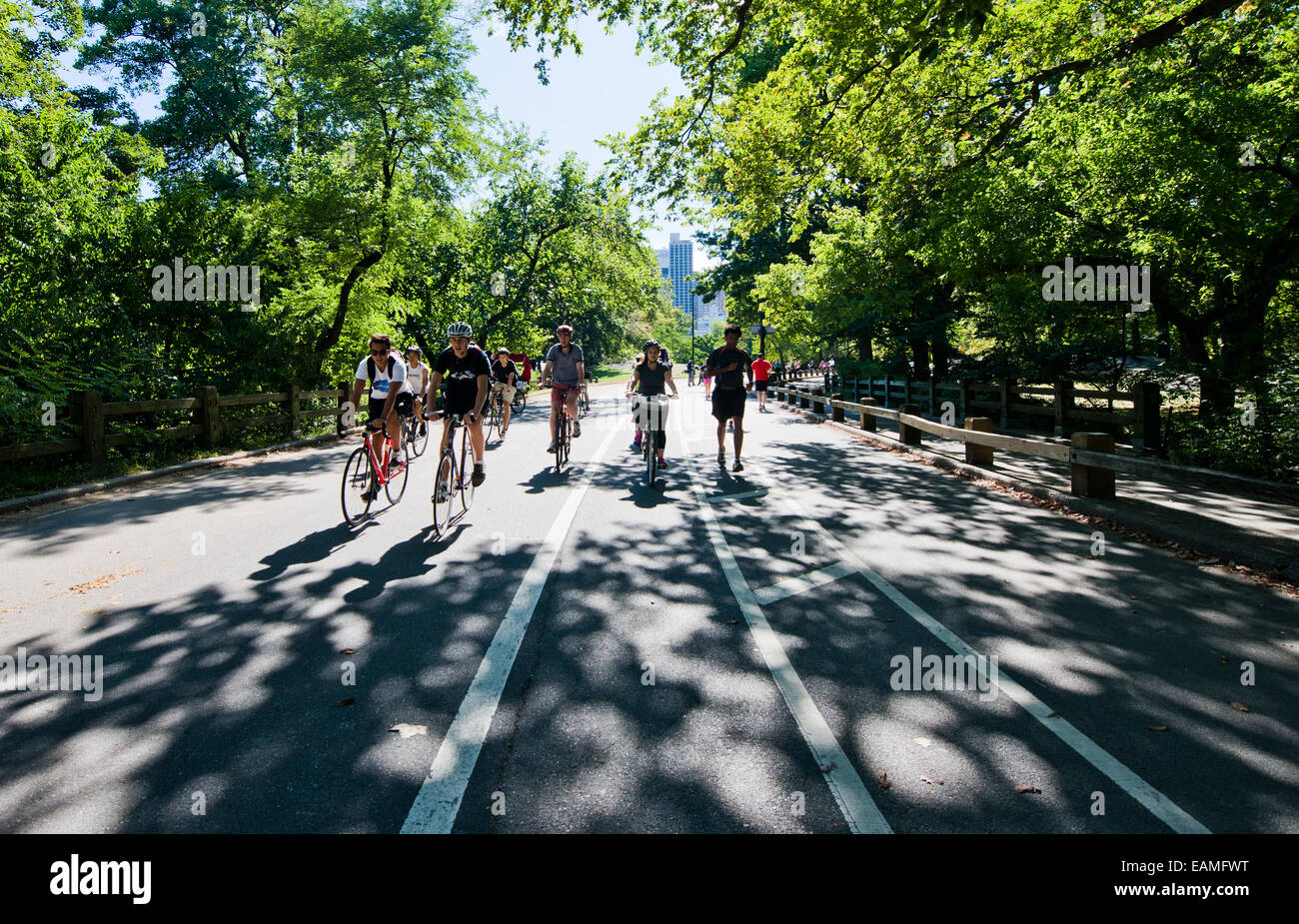 group of bicyclists in Central Park in New York city - Stock Image