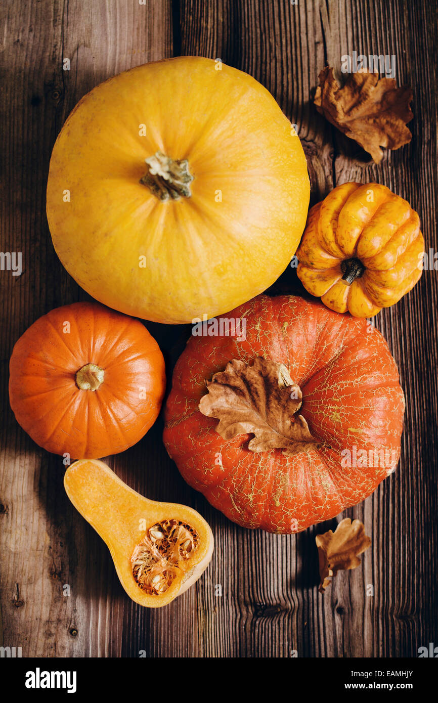 Assorted pumpkins - Stock Image