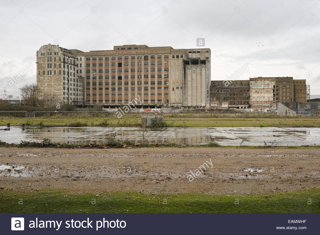 The derelict Millennium Mills building at West Silvertown: East London. - Stock Image