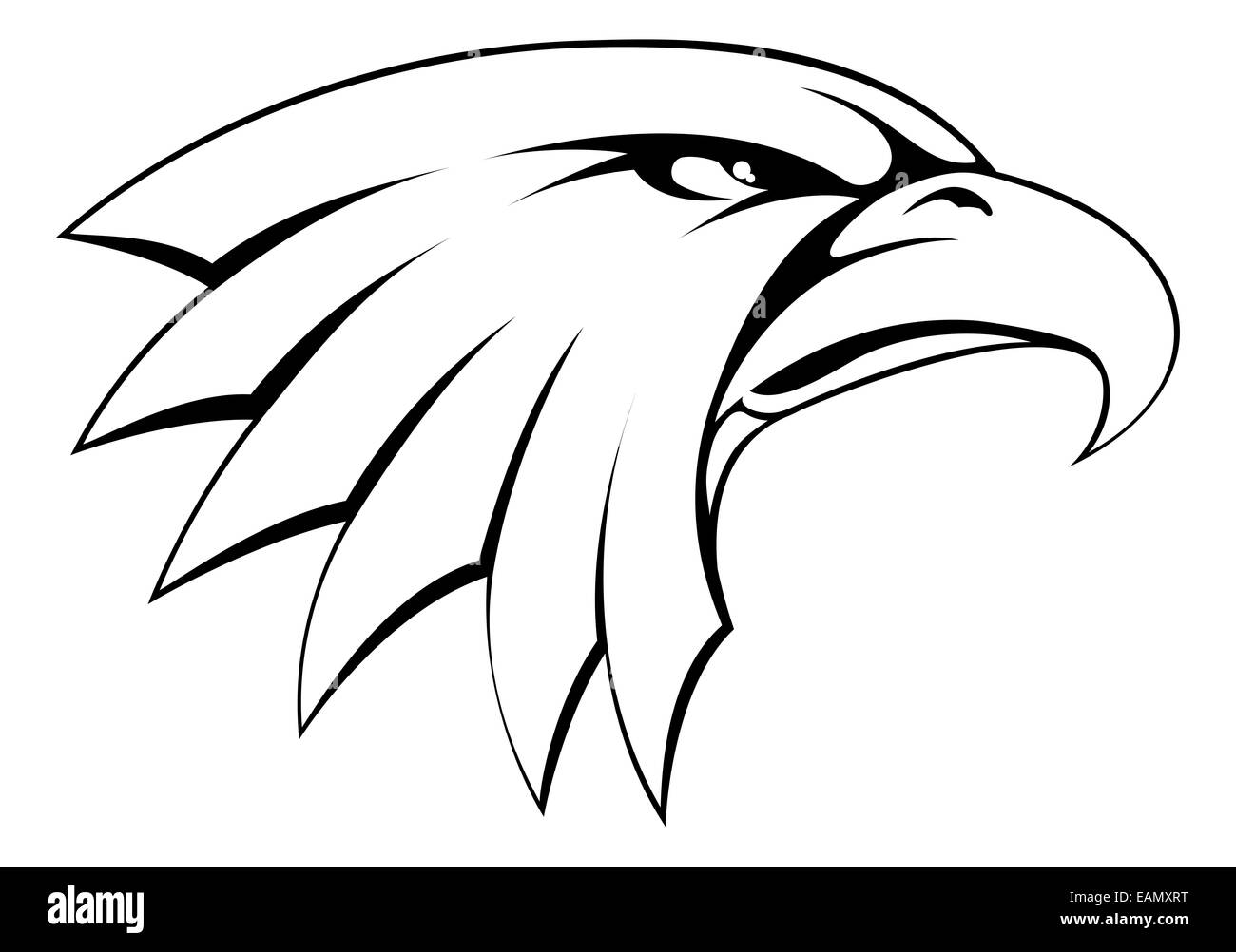 A proud powerful looking bald eagle head icon stock image