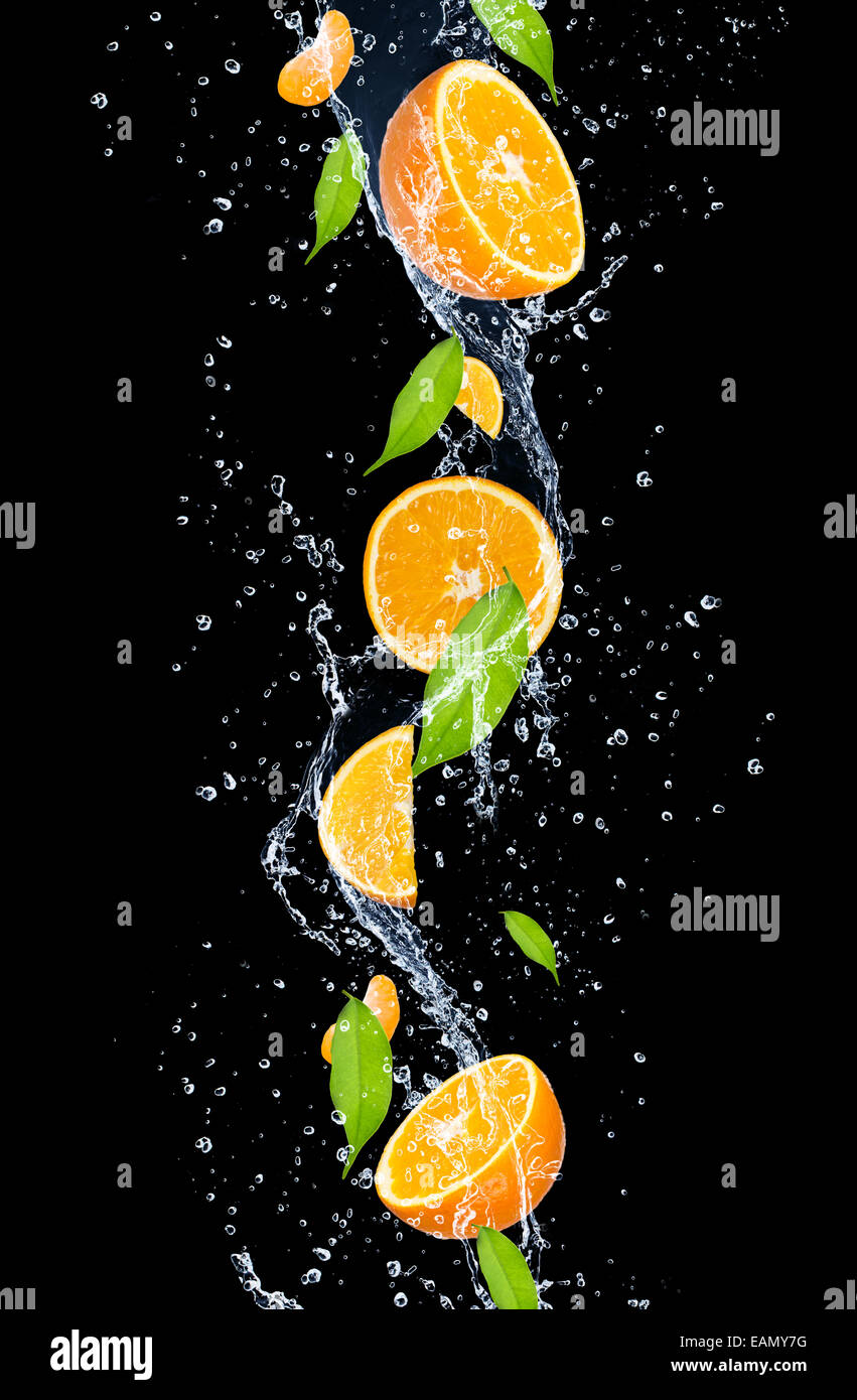 Oranges in water splash, isolated on black background - Stock Image