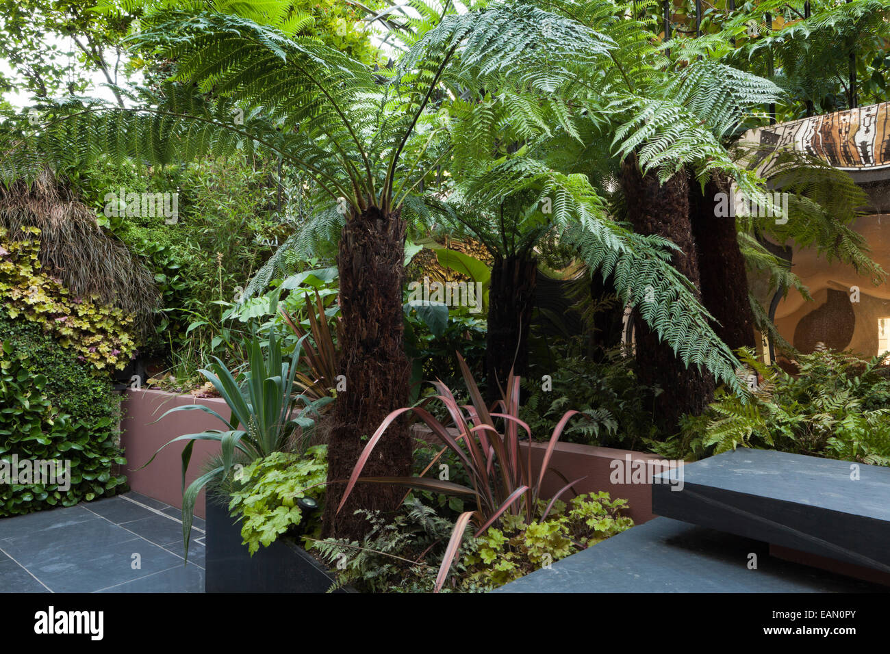 Patio Garden At Basement Level Showing Slate Steps, Raised Bed And  Powder Coated Steel Planter, With Tree Ferns, Ferns, Melianthus, Phormiums,  ...