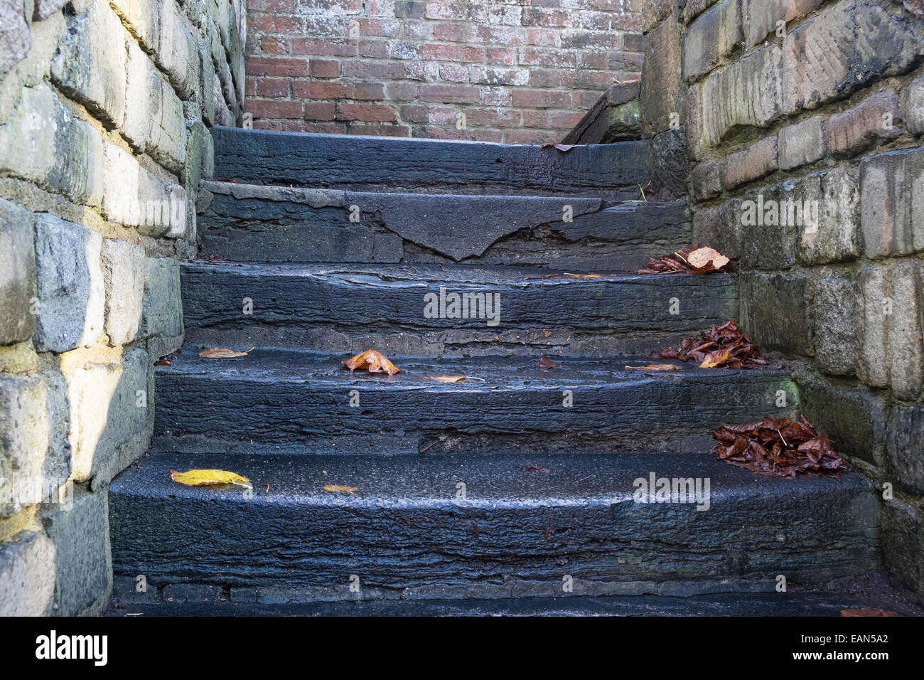 dangerous in the autumn and winter slippery stone and concrete steps coated with wet slime and covered with fallen - Stock Image