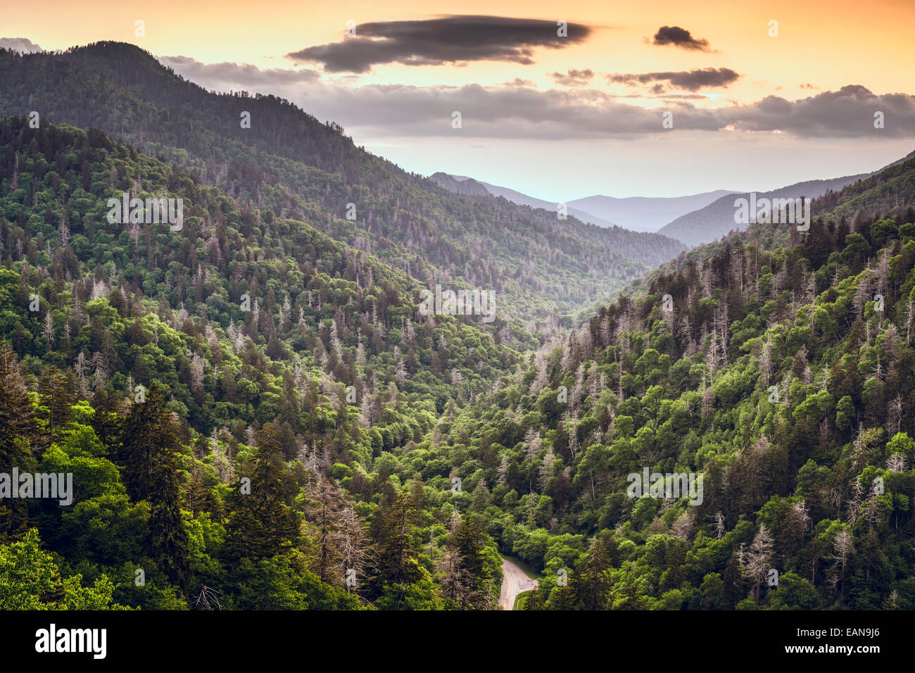 Smoky Mountains, Tennessee, USA mountainscape at newfound gap. - Stock Image
