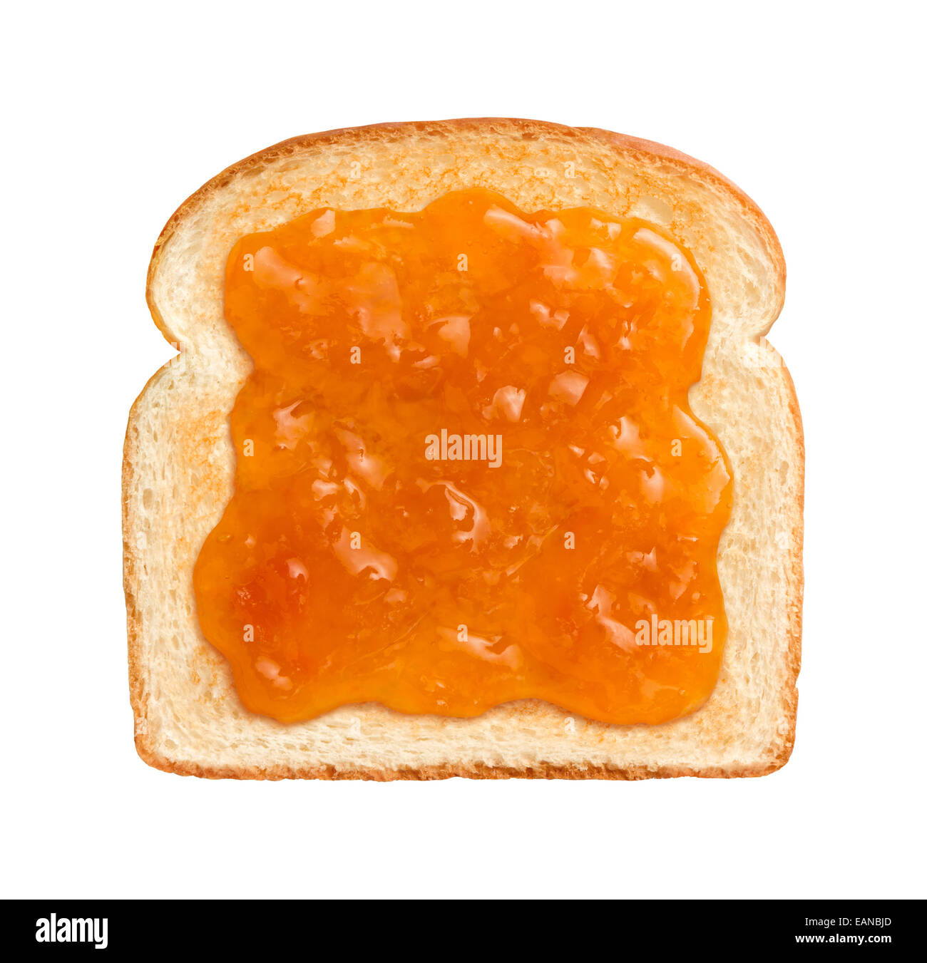 Aerial view of Apricot Preserves on a single slice of lightly toasted white bread. Isolated on white. - Stock Image