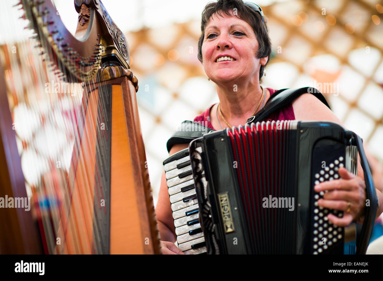 A woman playing traditional folk music on the accordion at the National Eisteddfod of Wales, Llanelli, August 2014 - Stock Image