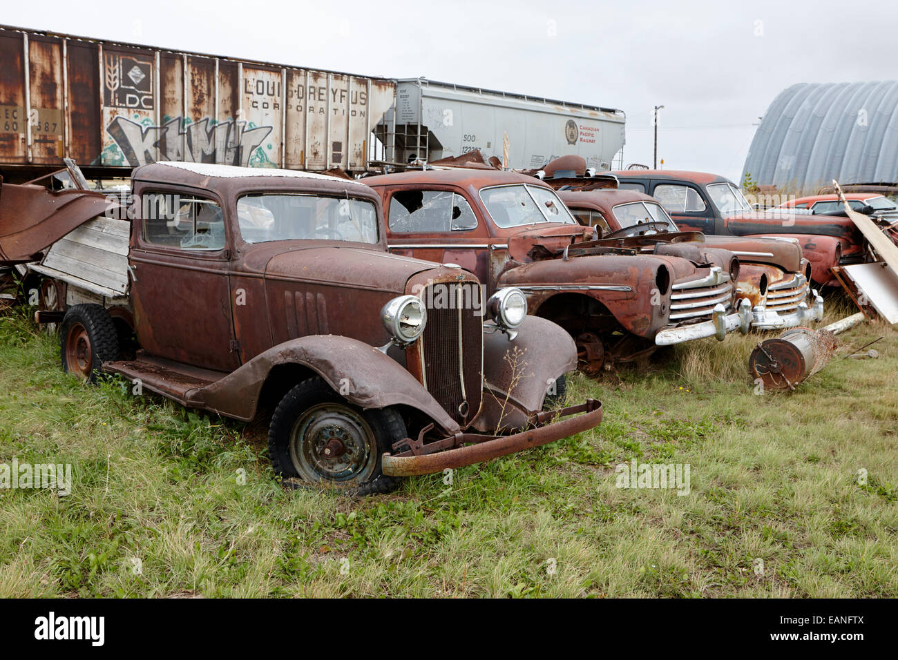 vintage historic chevrolet and ford vehicles in junkyard Saskatchewan Canada - Stock Image