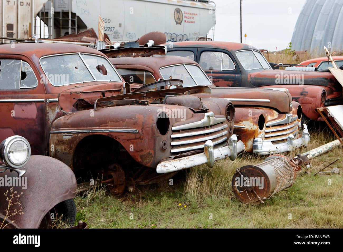 vintage historic chevrolet and ford vehicles in junkyard Saskatchewan Canada - Stock Image