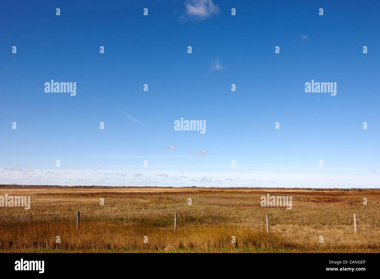 prairie fields and farmland Saskatchewan Canada - Stock Image
