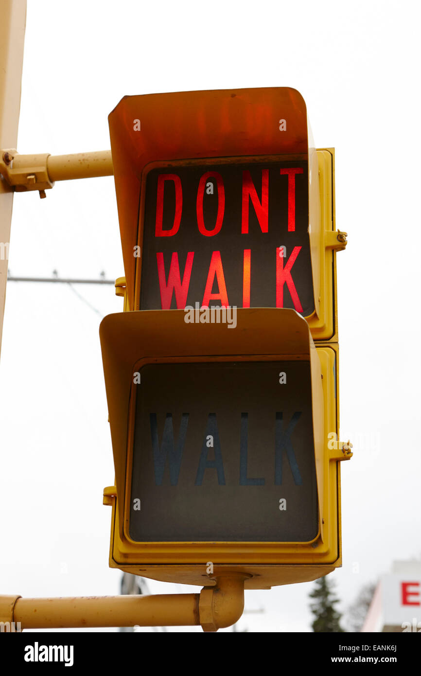 red dont walk crosswalk crossing lights north america - Stock Image