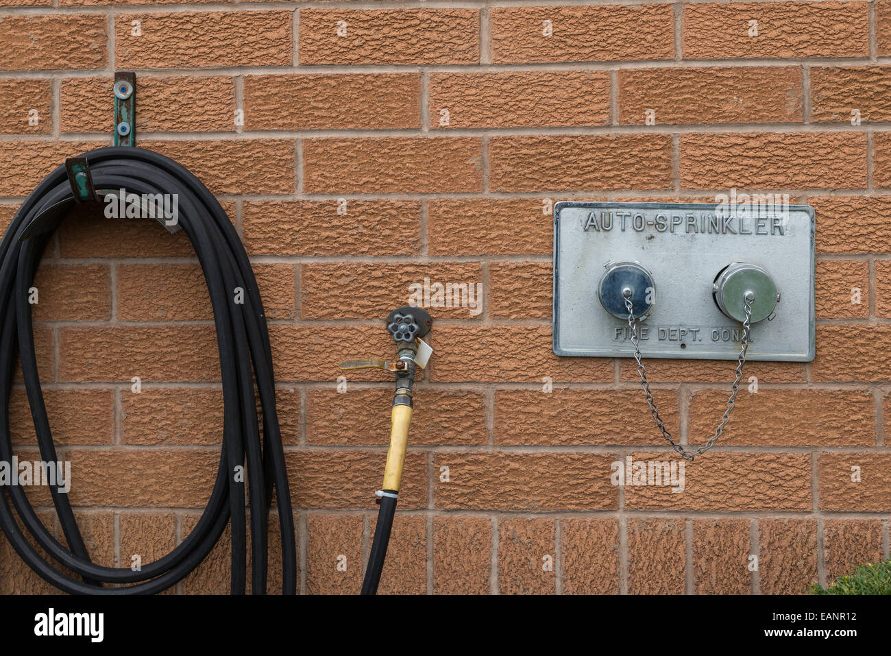 A black garden hose beside the fire department auto sprinkler outlet ...