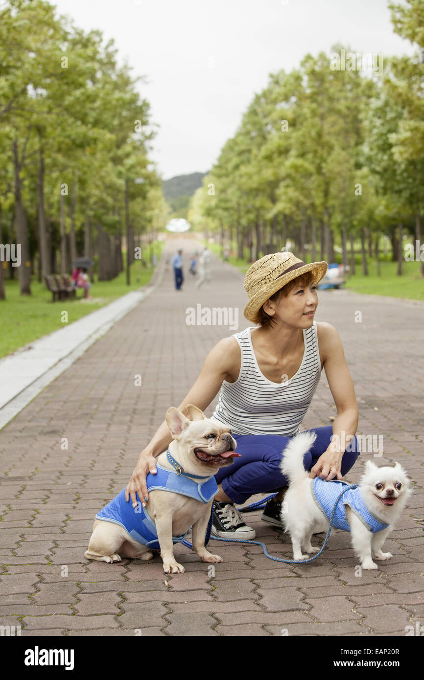 Woman walking two dogs on a paved path. - Stock Image