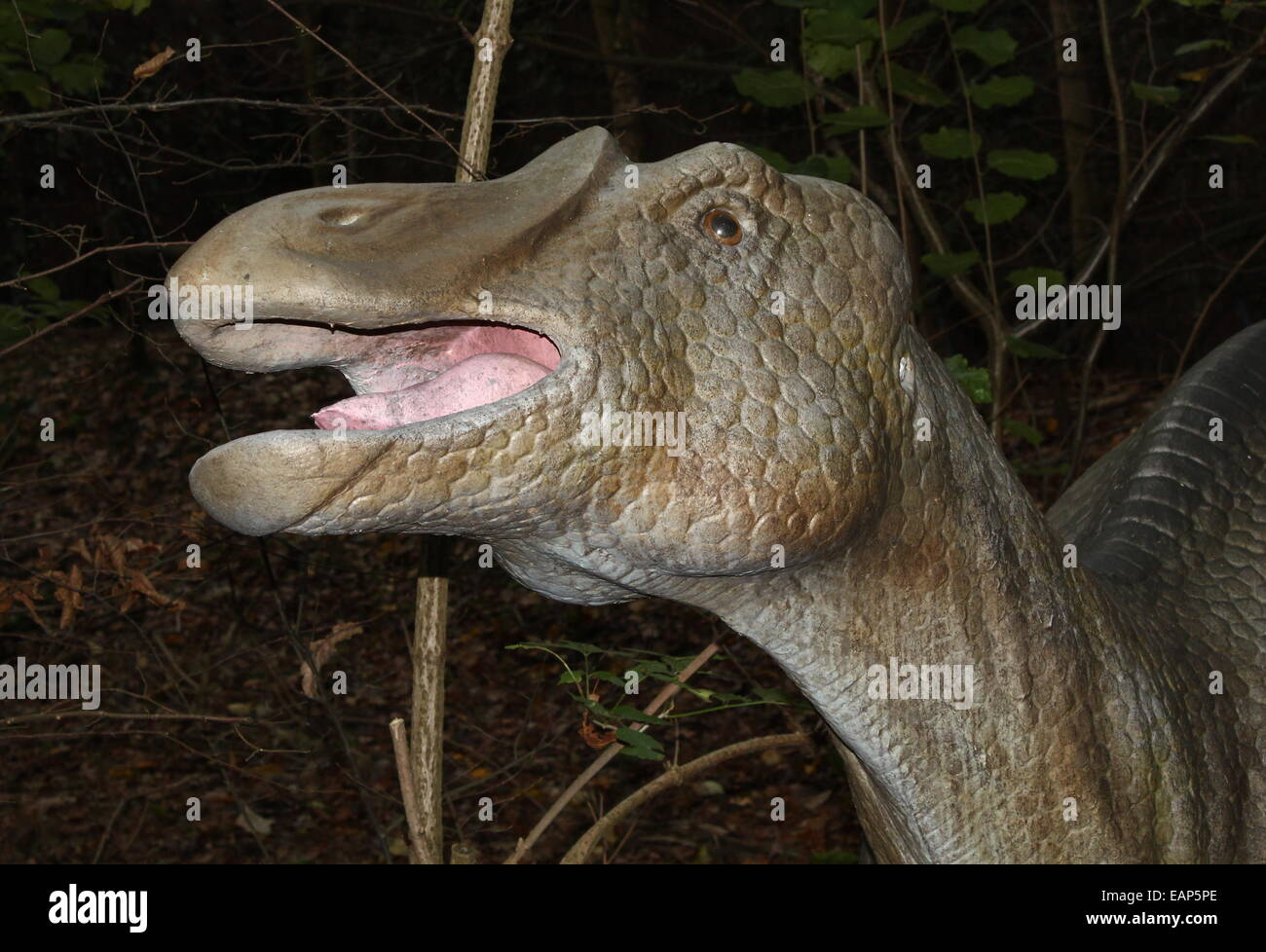 Probactrosaurus, a medium-sized Cretaceous-era herbivorous dinosaur from China, at Dinopark Amersfoort Zoo, Netherlands - Stock Image