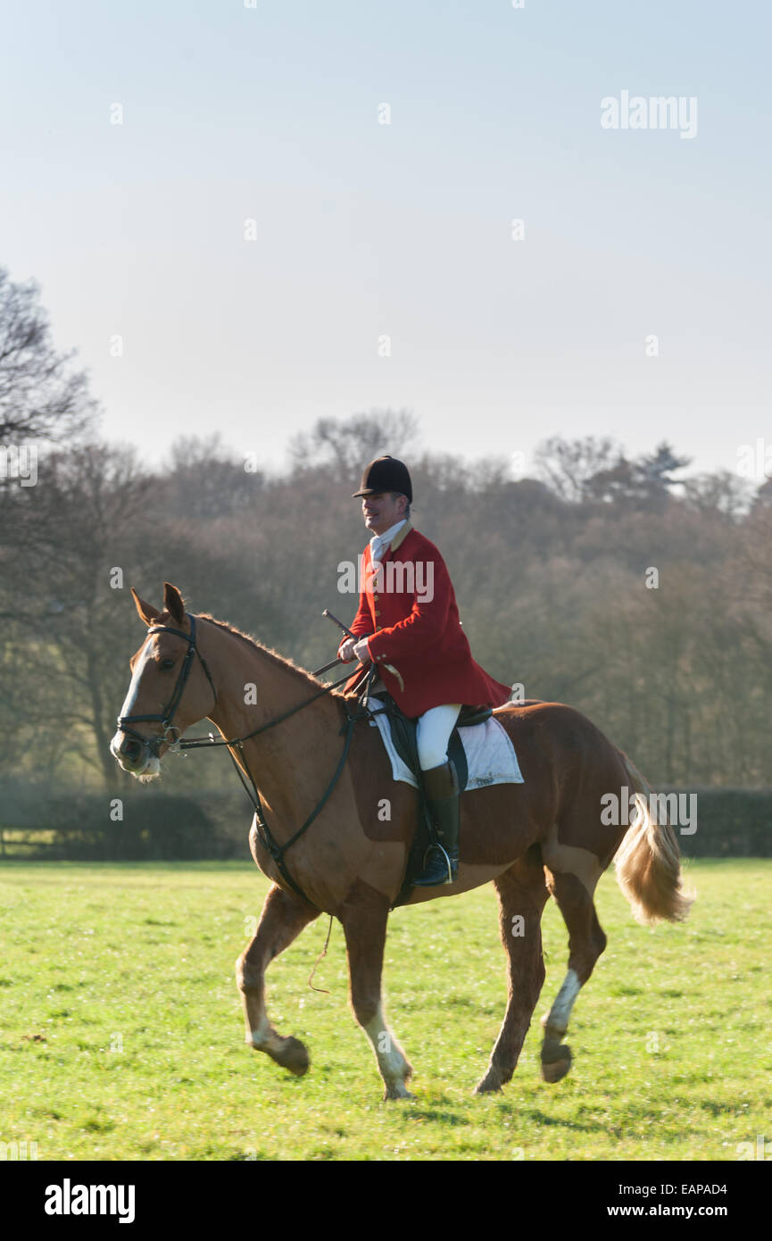 Foxhunters in Surrey, England. - Stock Image