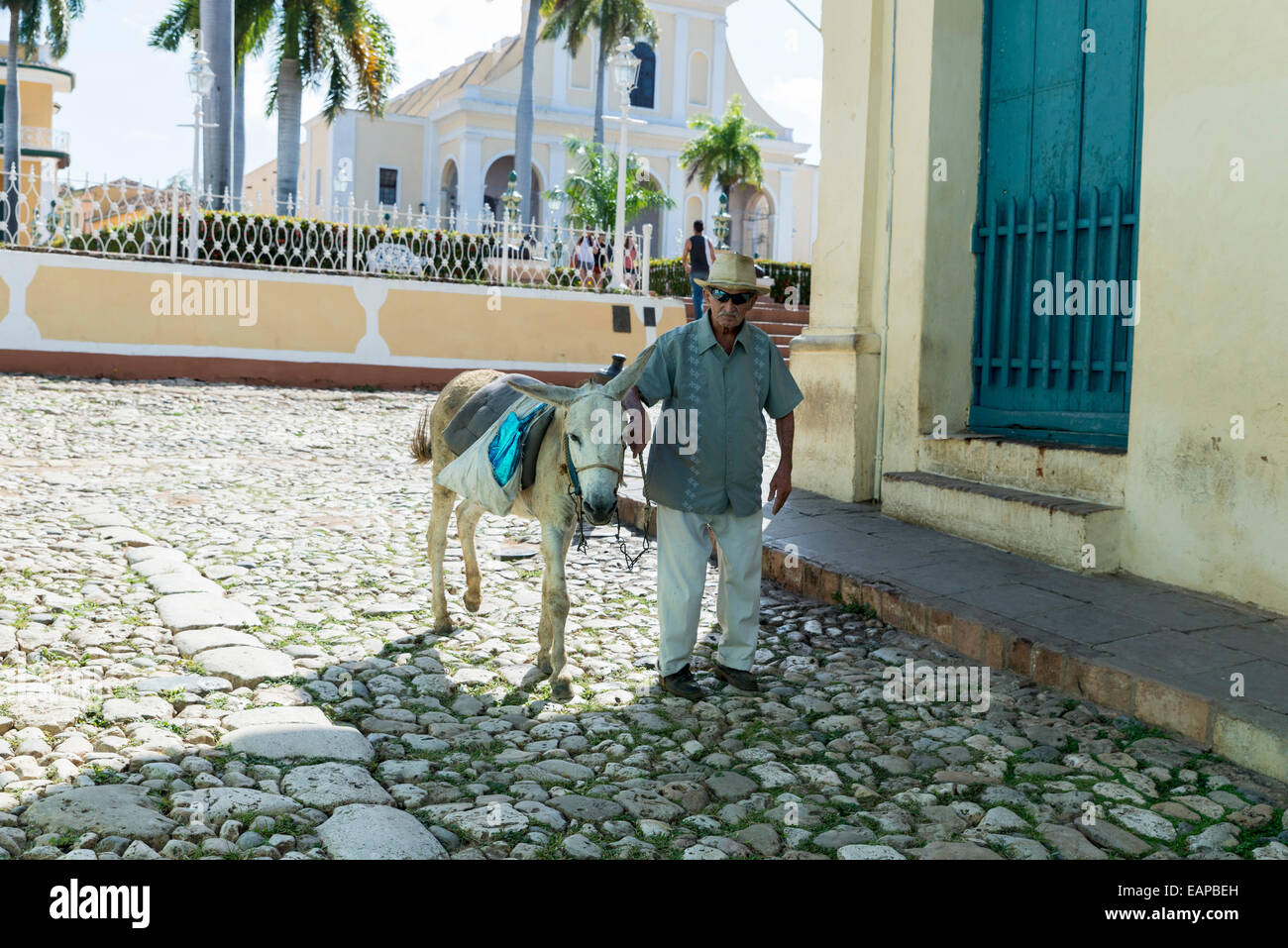 TRINIDAD, CUBA - MAY 8, 2014: Old men with donkey for rent in Trinidad. Working in tourism is the only way Cuban Stock Photo