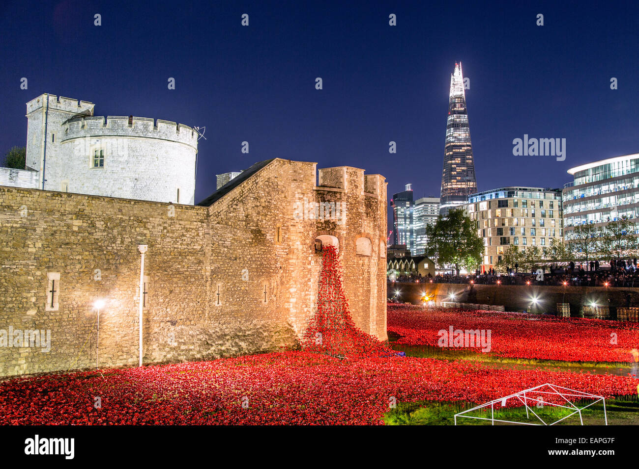 The Ceramic Poppy Memorial at Night Tower Of London UK Stock Photo