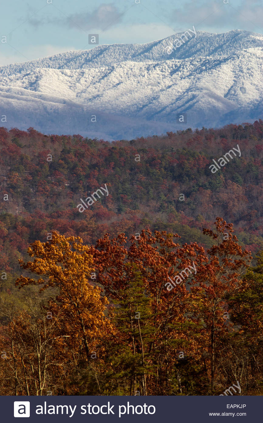 Great Smoky Mountains National Park Stock Photos Amp Great