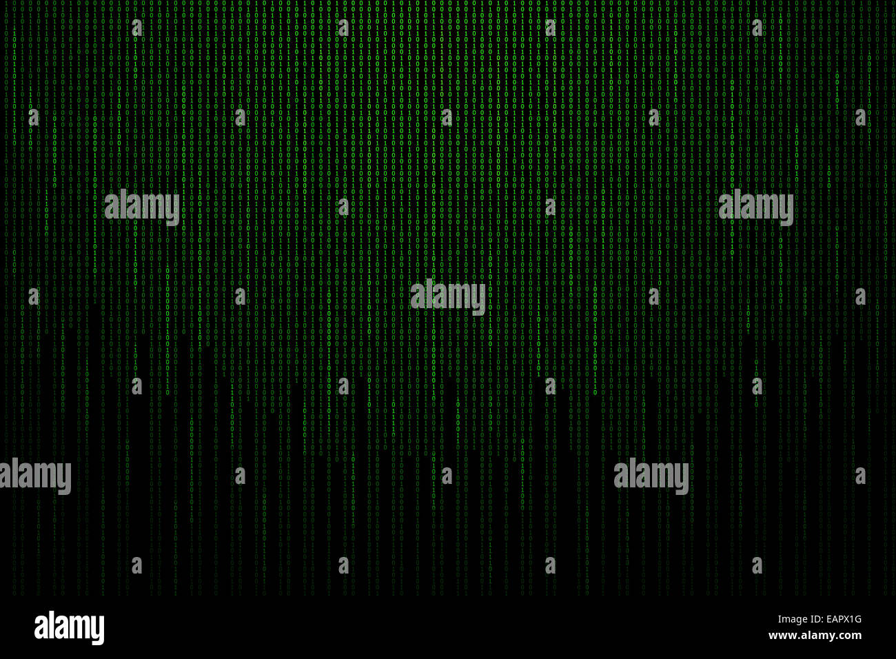Matrix background with the green binary code. - Stock Image