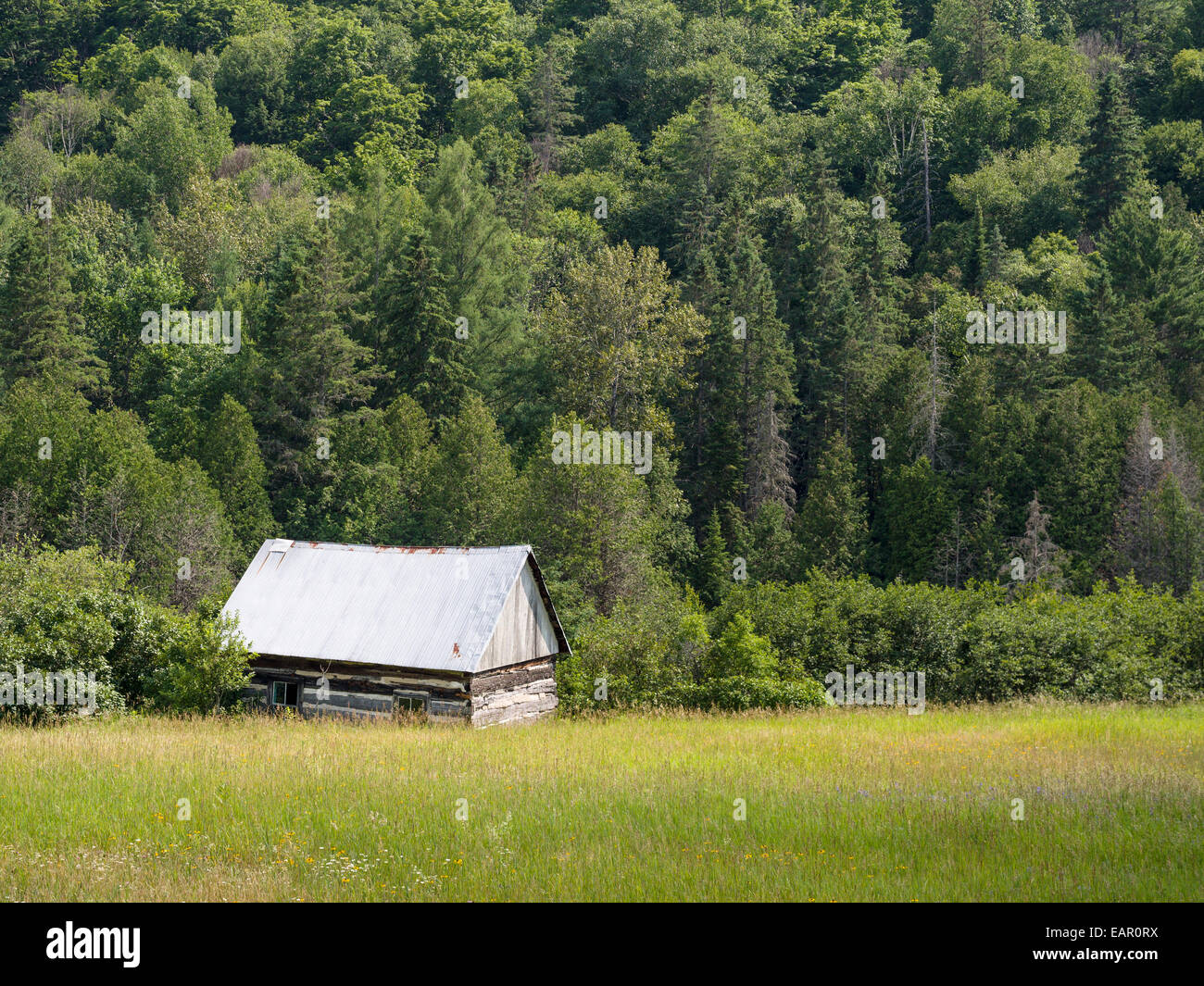 Isolated Log Cabin in the Woods. Tommy's Cabin at the edge of a wooded slope. Barnes Lake, Thorne Township, - Stock Image