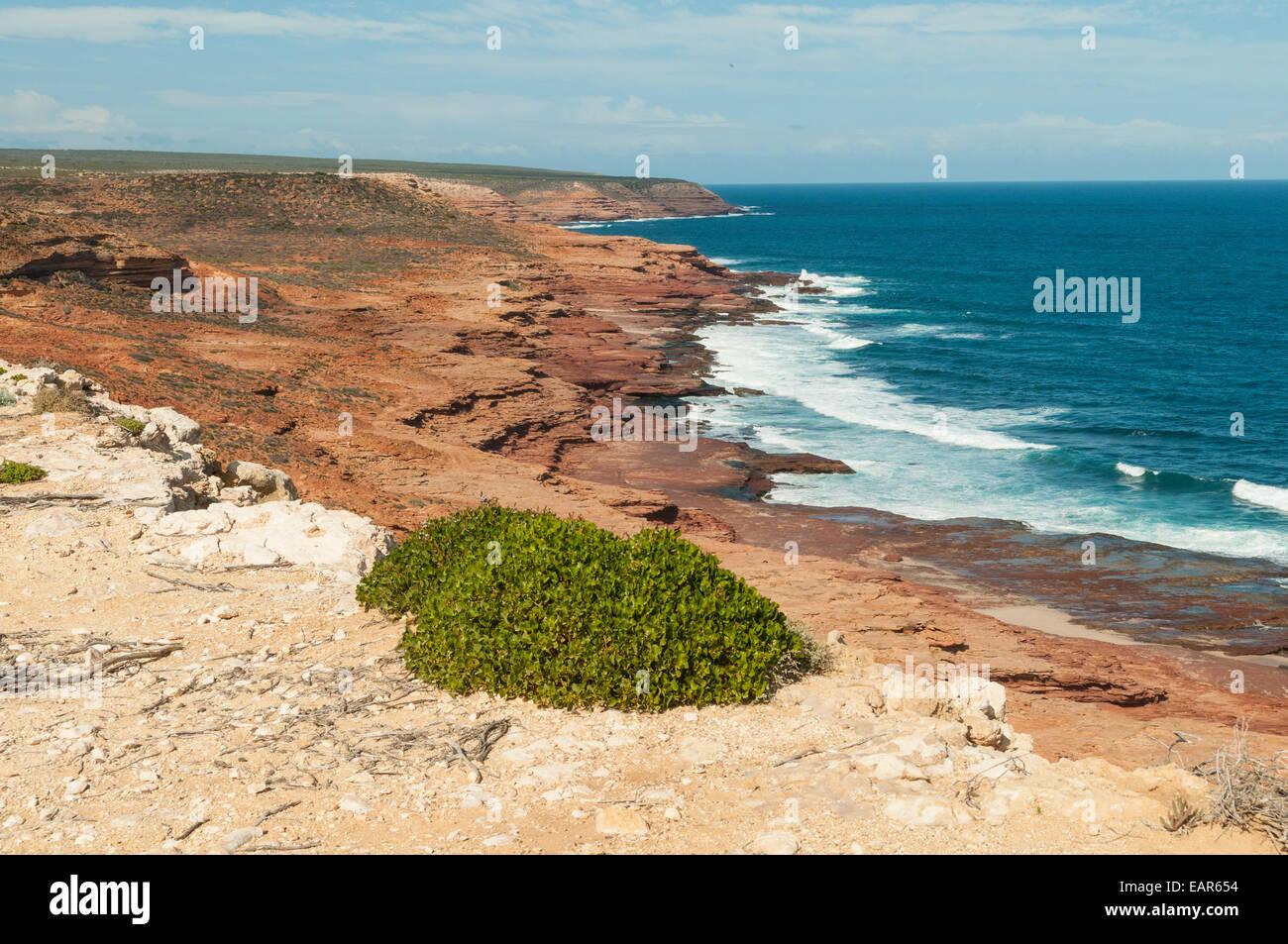 View South from Red Bluff, Kalbarri NP, WA, Australia - Stock Image