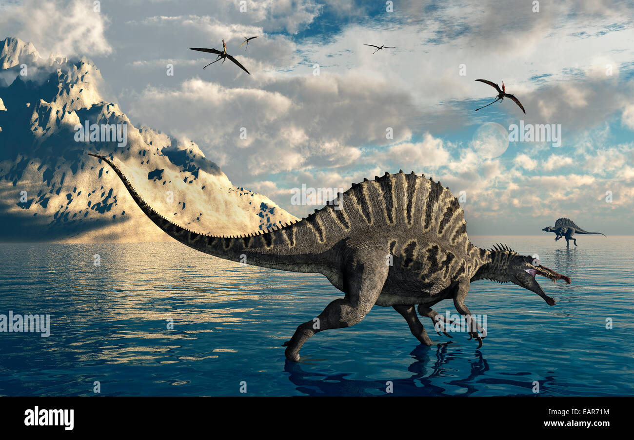 A Pair Of Carniverous Spinosaurus Fishing. - Stock Image