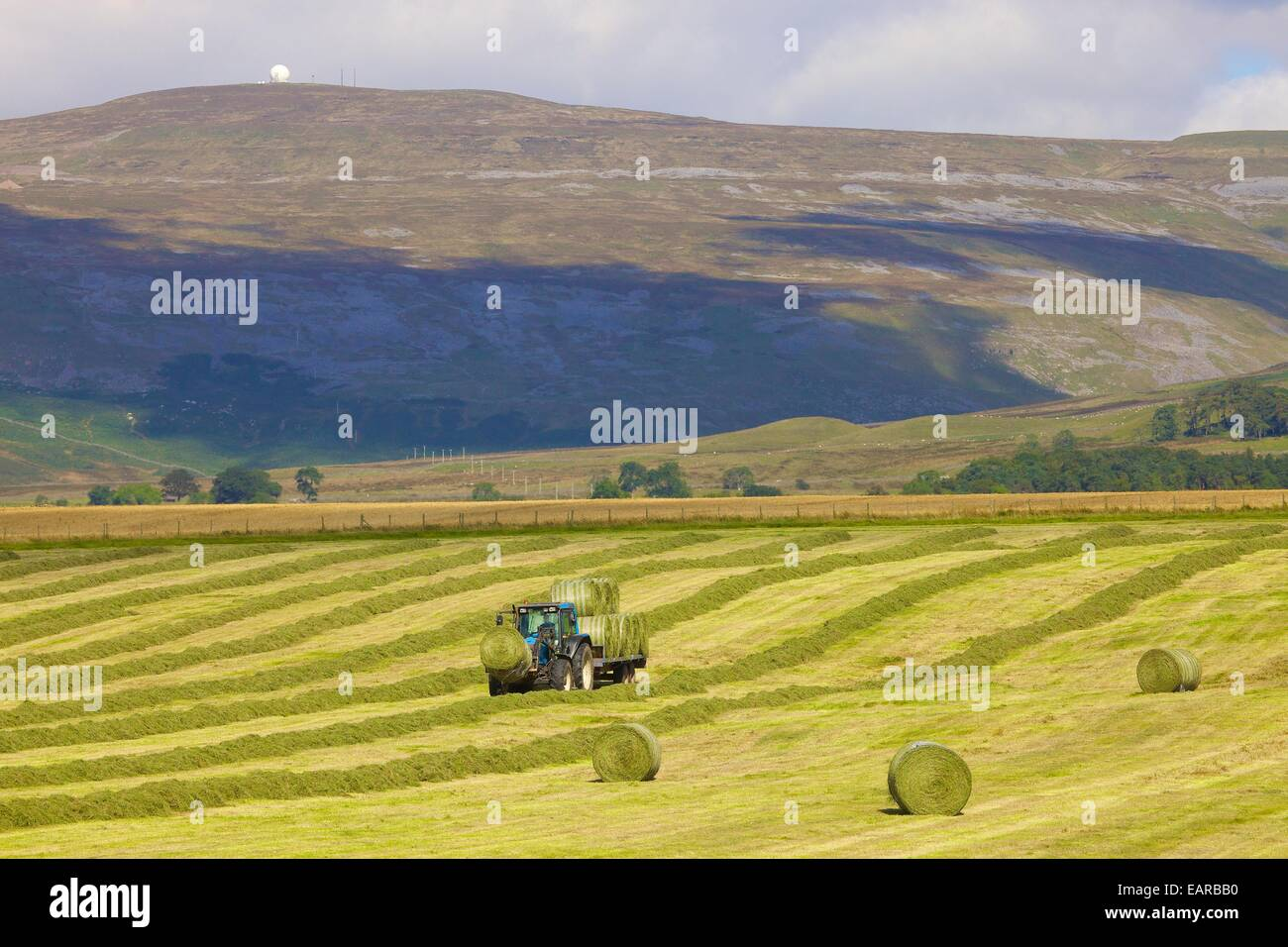 Tractor and trailer transporting hay bails below radar station. Great Dun Fell, Eden Valley, Cumbria, England, UK. - Stock Image