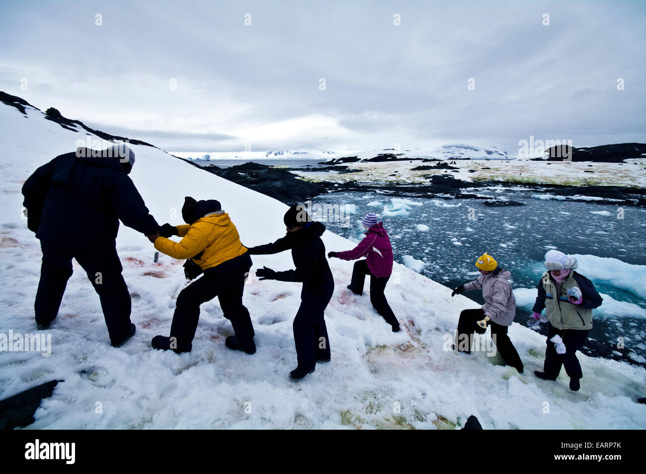 Tourists help each other clamber up a snowy slope in Antarctica. - Stock Image