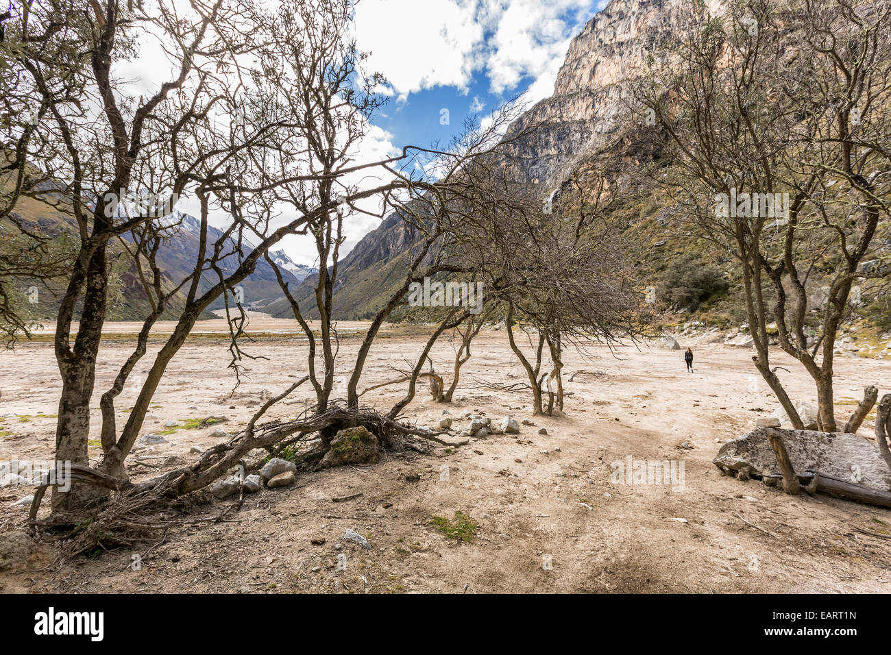 On Santa Cruz trek, Santa Cruz valley, Cordillera Blanca, Andes, Peru, South America - Stock Image