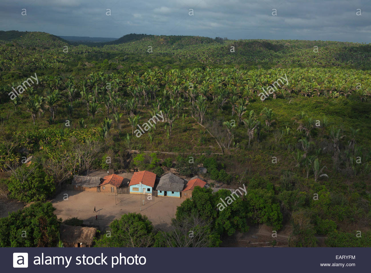 A hundred families harvest a meager living from the palm forests near the village of Santo Antonio dos Pretos. - Stock Image