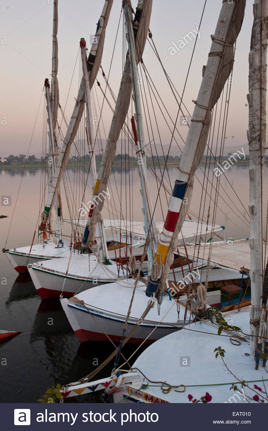 Feluccas tied together on the Nile. - Stock Image