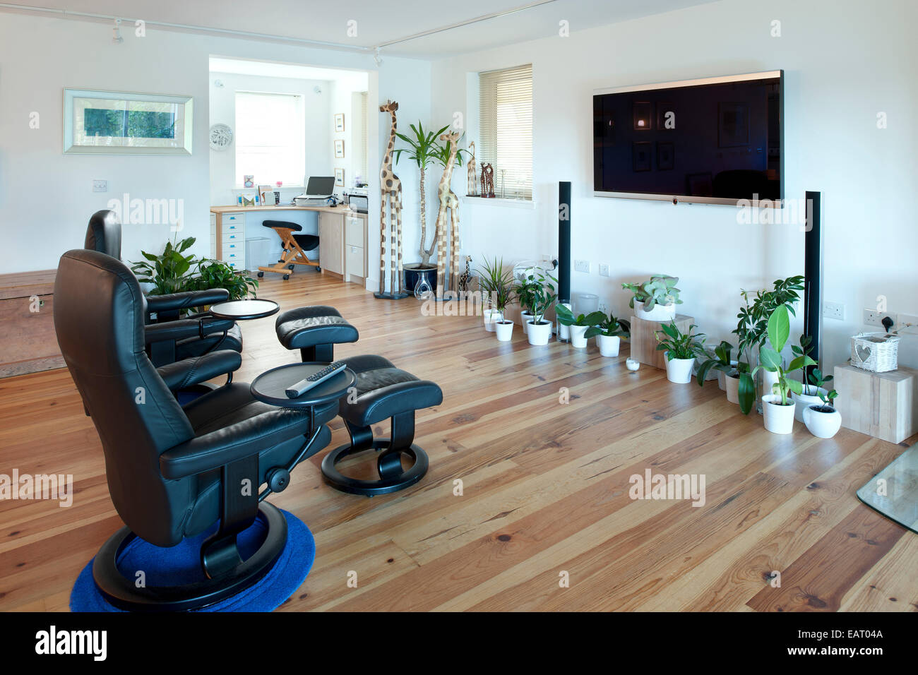 Home entertainment room, Dalkeith, Midlothian, Scotland, UK - Stock Image
