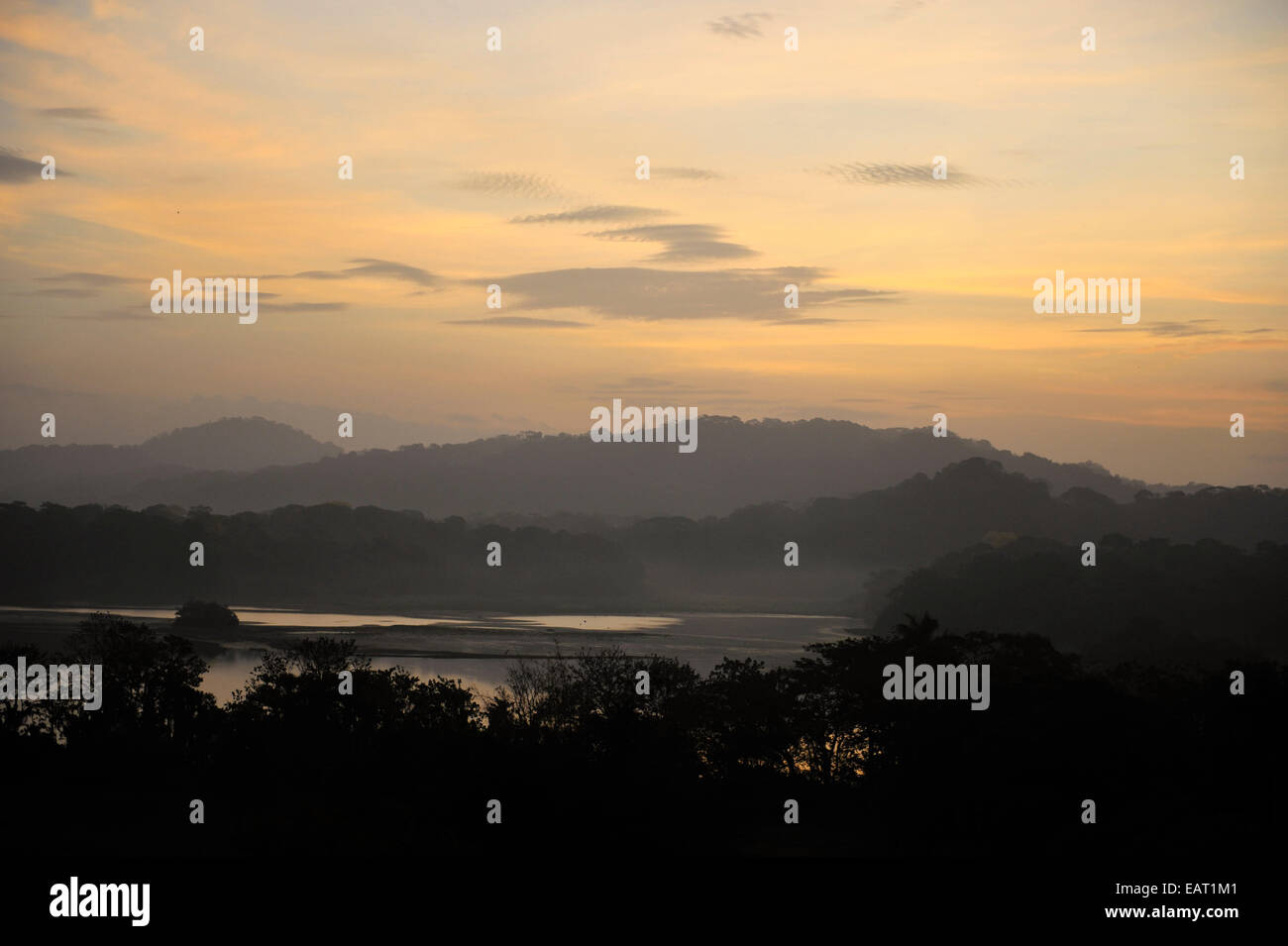 Sunrise View over Jungle Canopy & Gatun Lake Panama - Stock Image