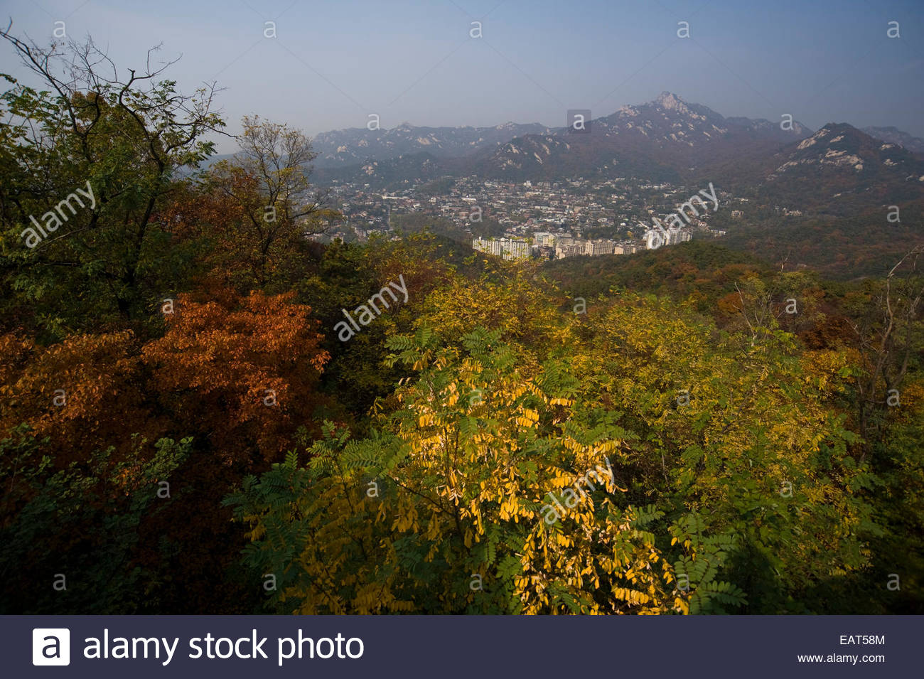 Trees in fall colors partially obscure the sprawling city of Seoul. - Stock Image