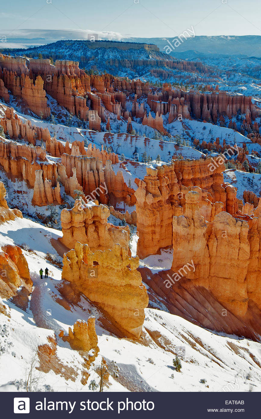 Bryce canyon in the early morning after a recent snow storm. - Stock Image