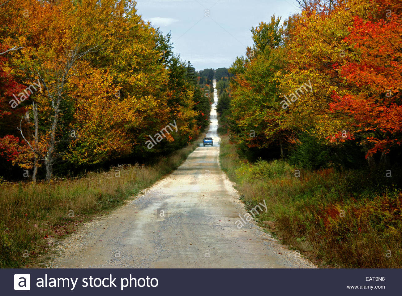 A pick up truck drives down a dirt road in the Dolly Sods Wilderness. - Stock Image