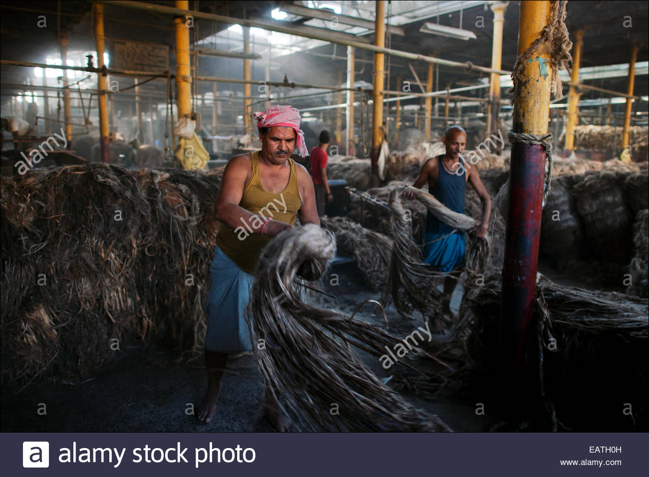 Migrant workers from Bihar turn raw jute into bolts of golden fiber at the 1858 built Hastings Jute Mill. Stock Photo
