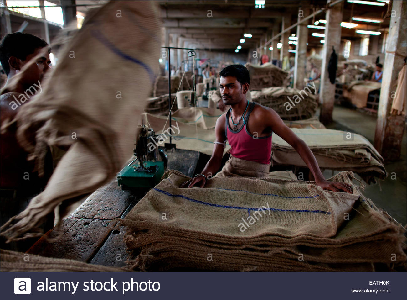 Environmentally friendly and newly popular burlap shipping sacks being made at the Hastings Jute Mill. - Stock Image