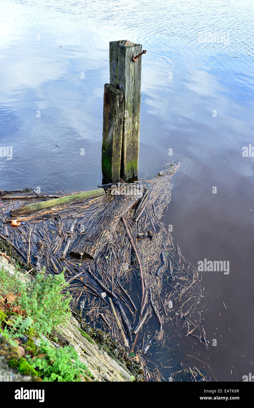 Stock Photo - River polluted with debris.  Photo: George Sweeney/Alamy - Stock Image