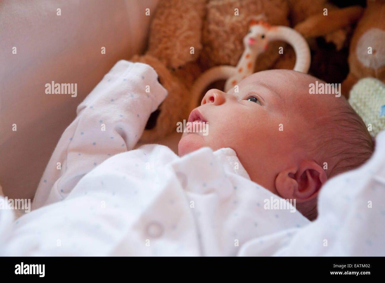 Baby in cot with toys - Stock Image