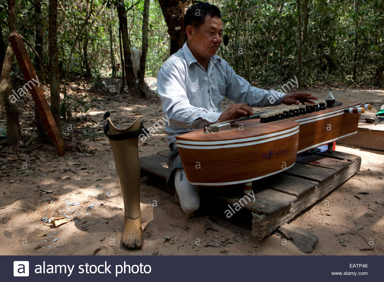 A war veteran plays his stringed instrument. - Stock Image